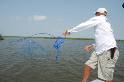 Cast nets can be used to catch baitfish right on fishing grounds, and are used in fresh and saltwater by live bait anglers who want the freshest bait possible.