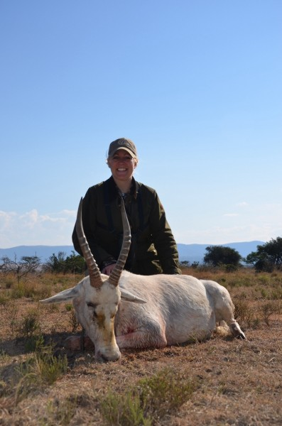 The author's white blesbok. Image courtesy Michelle Whitney Bodenheimer.