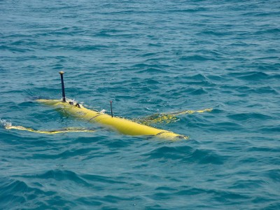 PETA is considering selling autonomous underwater vehicles, or submersible drones, to spy on fishermen.