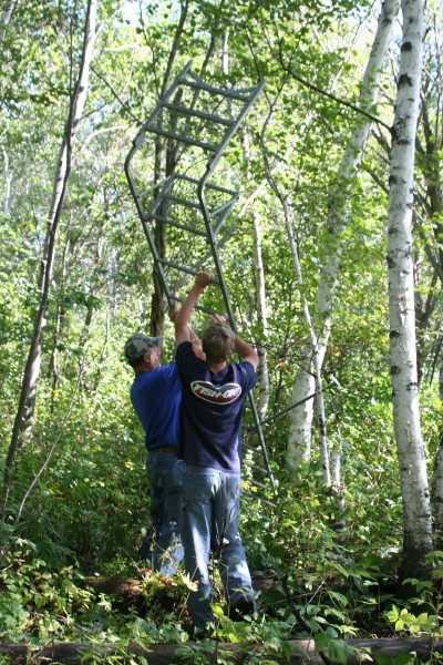 Ladders stands are more safe and secure than hang-ons or climbers, but they are heavier and harder to put up. They are a good choice for using in places where they will be left for long periods of time.
