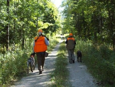 Michigan has more than 8 million acres of public hunting land. Image by Sharon Starr.