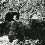 Roy Lindsley with the world record Kodiak bear taken on Kodiak Island, Alaska.