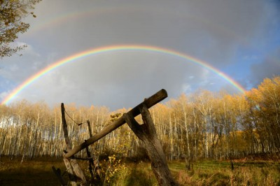 A twin rainbow frames gold-leafed aspens on a Colorado mountaintop.