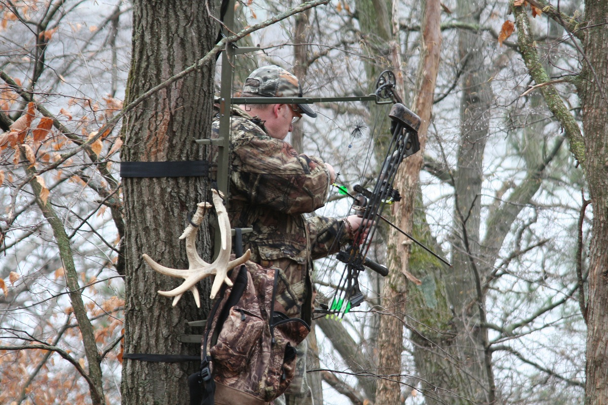 The Killing Tree 4 Things That Make A Perfect Treestand