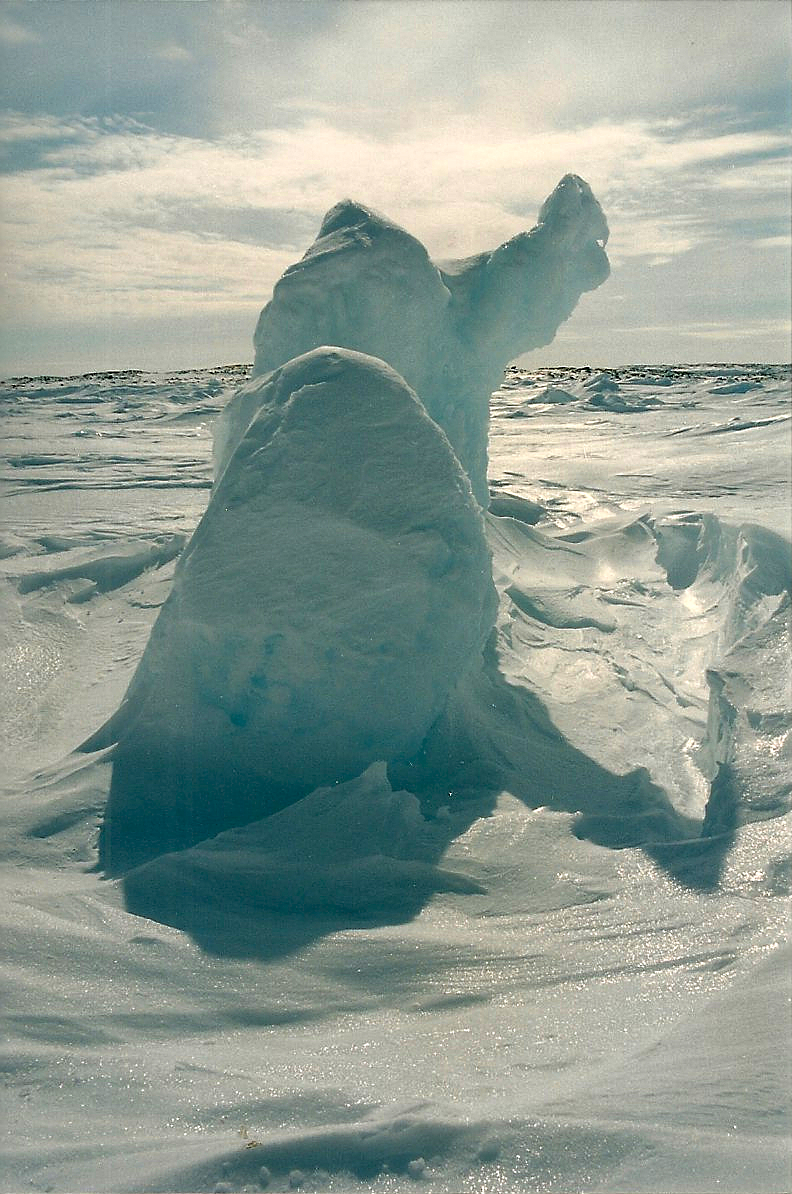 Some Arctic artistry. Image courtesy Dennis Dunn.