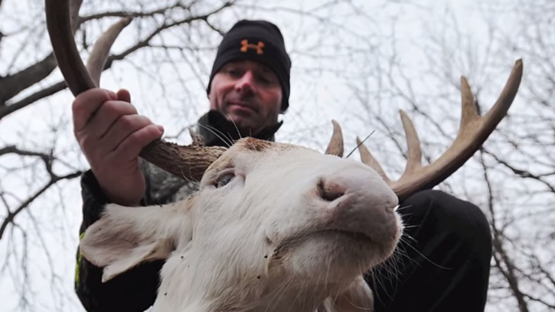 Bowhunter Jerry Kinnaman displays his albino buck, which was taken on his property this week.  Image screenshot of video by semissourian on YouTube