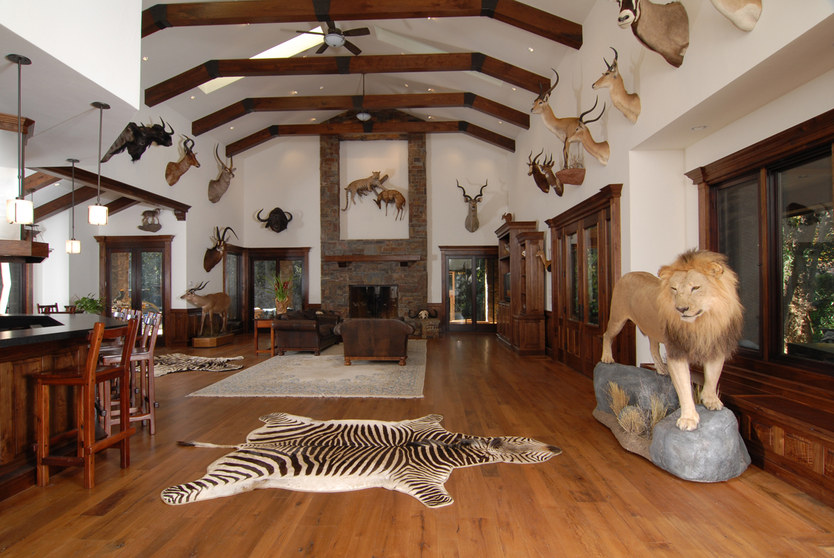 Photos how to design a trophy room outdoorhub How to design a trophy