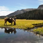 Prepare yourself for horseback rides into the mountains and views like this if you decide to plan a Wyoming mule deer hunt.