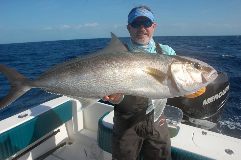 Amberjack on light tackle make for as much rod-and-reel challenge as anyone could want.