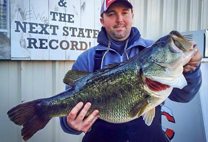 Tennessee teacher breaks state 39 s 60 year old largemouth for Bass fishing in ohio
