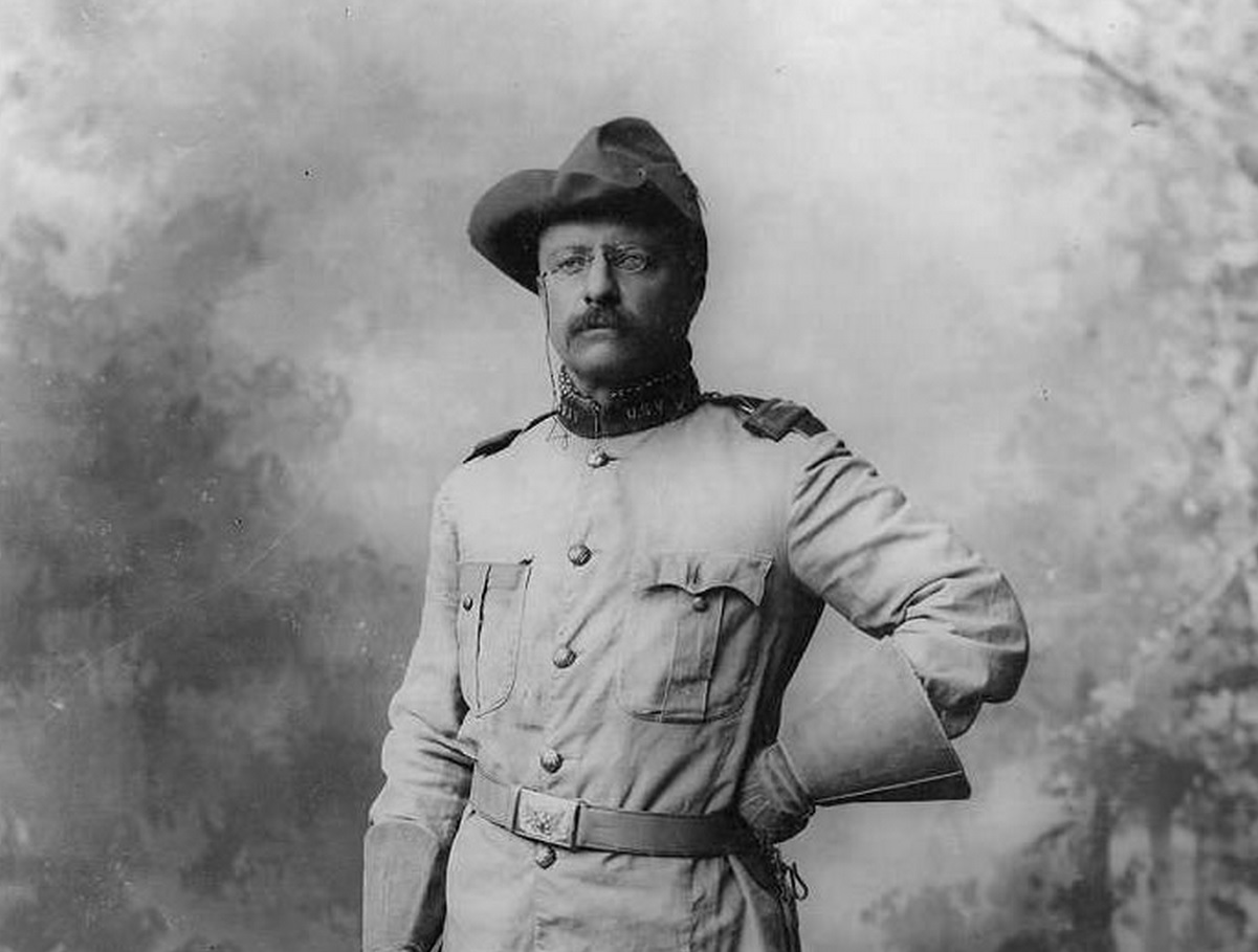 The times of theodore roosevelt in american history