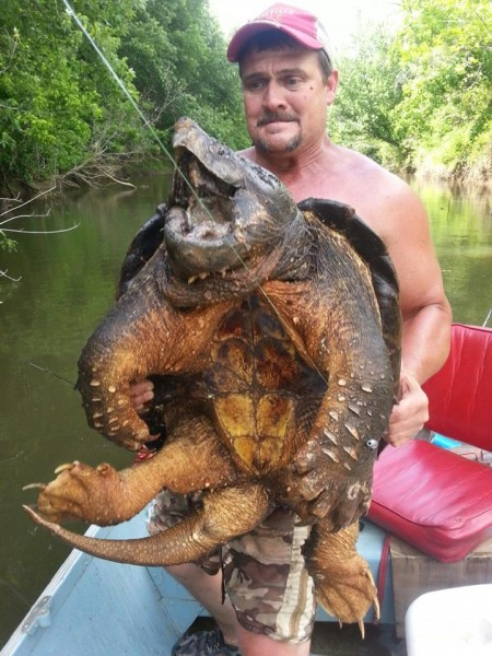 Dave Harrell took this picture of Audrey Clark holding their 100-pound Oklahoma alligator snapping turtle.