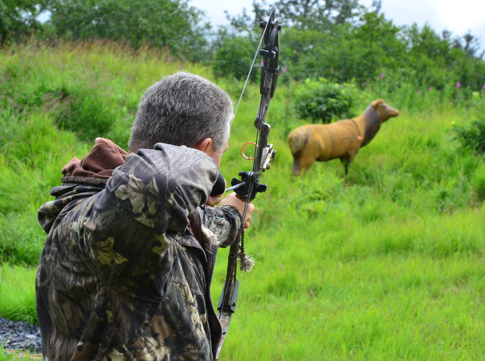 benefits of hunting Clemson university tigerprints all dissertations dissertations 5-2015 exploring and measuring the benefits of hunting susan talley guynn clemson university.