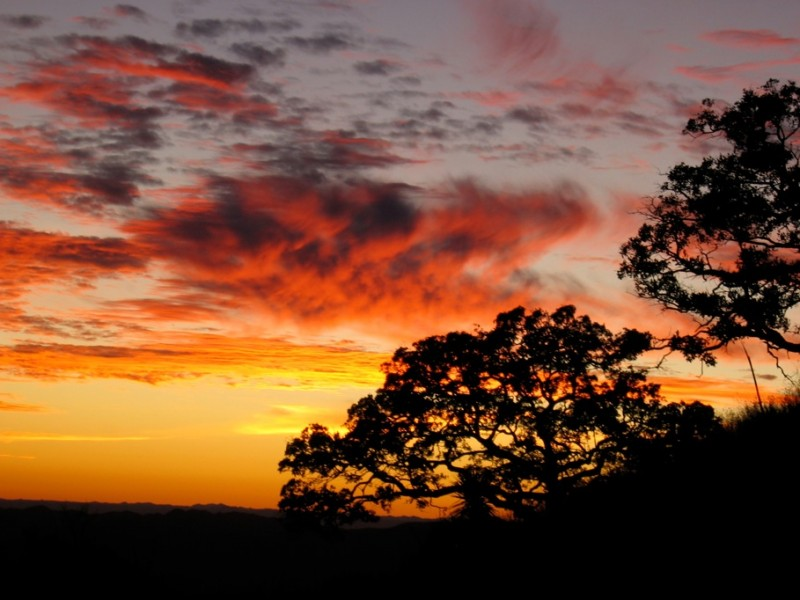 A Sonoran sunset on the the Chairababi Ranch. Image courtesy Dennis Dunn.