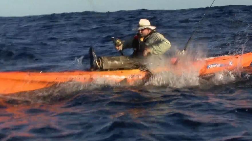 fishing break how to catch a shark