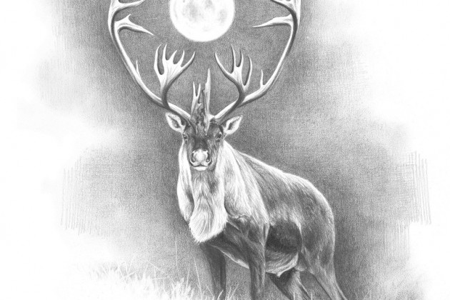 Caribou & moon