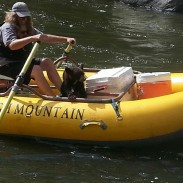 A raft guide in Tennessee found himself ferrying a stranded bear cub to safety.