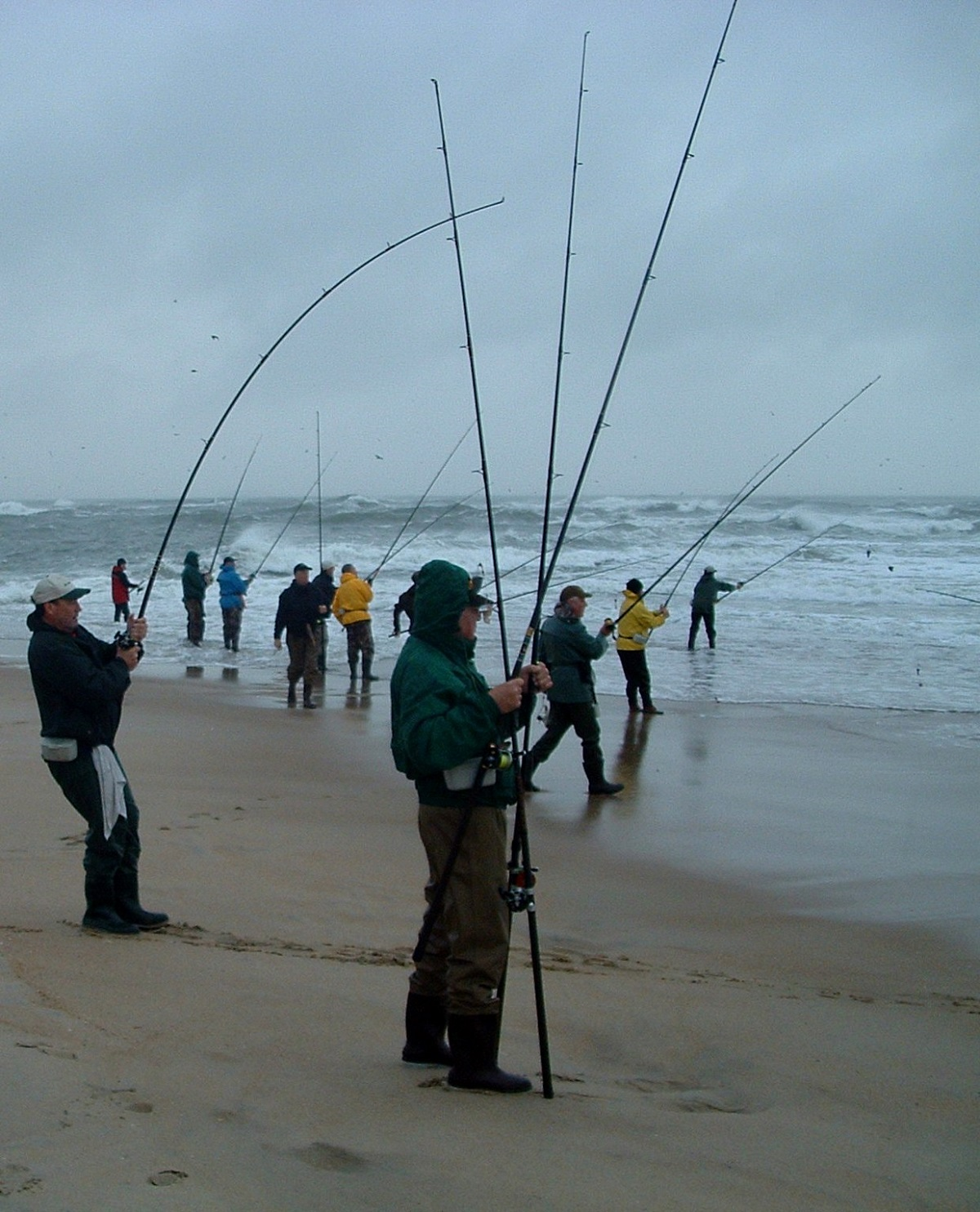 A guide to line choices for catching big redfish in the for Surf fishing nj