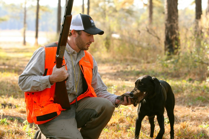 Deer hunting dog breeds - photo#23