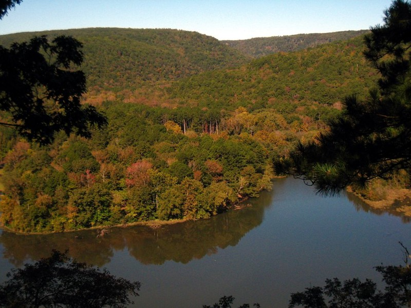 Shores Lake in the Ozark National Forest. Image by Marco Becerra in the Wikimedia Commons.