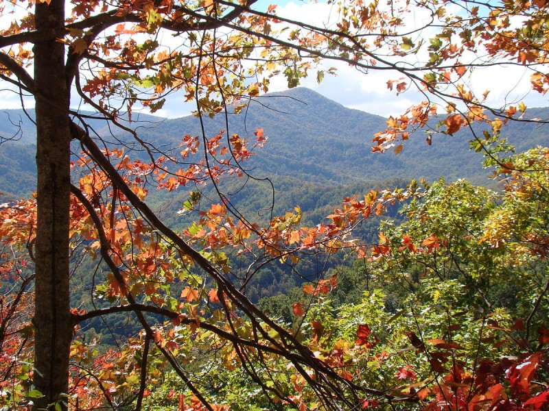 Great Smoky Mountains National Park. Image by USchick on the Wikimedia Commons.