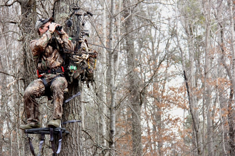 The more times you hunt a stand, the less likely you are to see a buck from that stand.