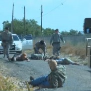 Goodfellow base personnel inspect hunters on the pavement during a dove hunt.