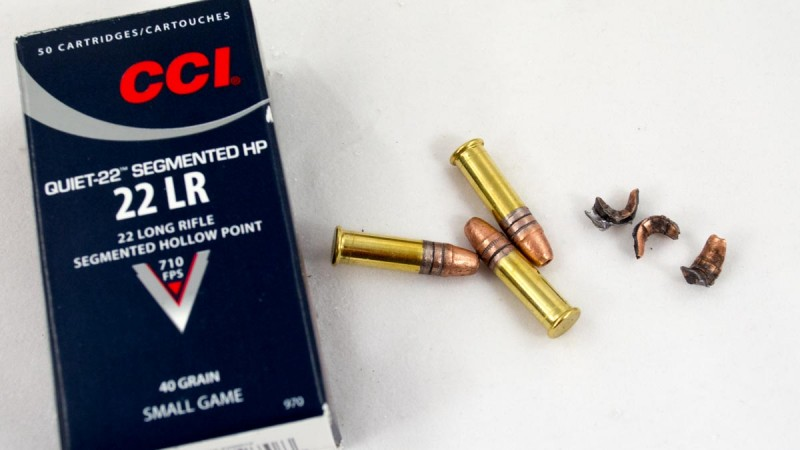 The CCI Segmented HP breaks into three pieces on impact - great for varmint control.