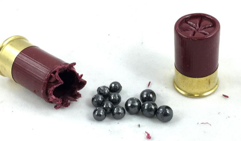 Aguila crams 11 pellets into one of these tiny buckshot loads.