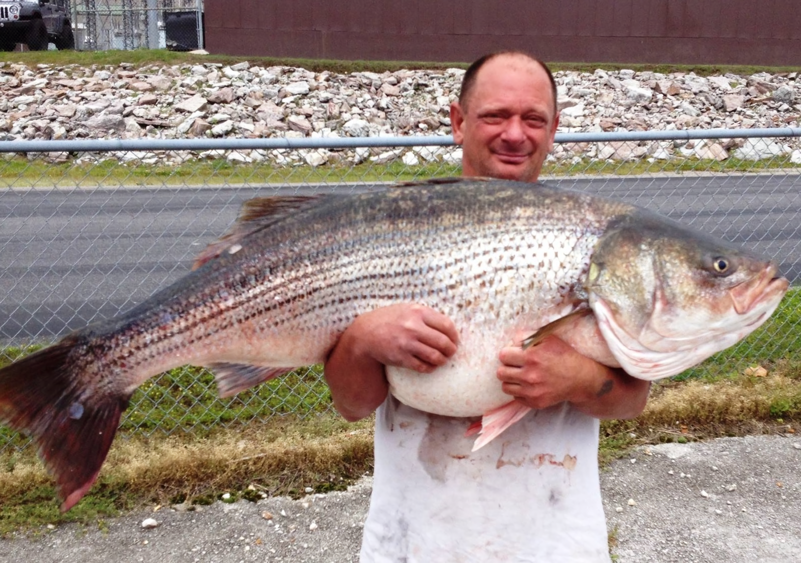 20 monster fish from 2015 that made our jaws drop outdoorhub for Pictures of big fish
