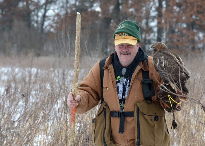 Patrick LaBarbera of Black River Falls walks from the woods with his red-tailed hawk, Nala, after a successful hunt.