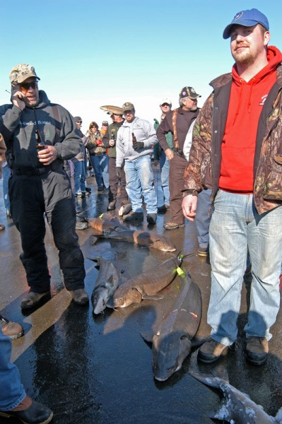 A sturgeon season's success is determined mostly by water clarity, which varies by the year and locations on Lake Winnebago and its upriver lakes of Poygan, Winneconne and Butte des Morts.