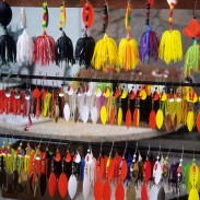 Beginning anglers may have a lot of questions about lures vs bait. In fact, so do veteran fishermen as well.