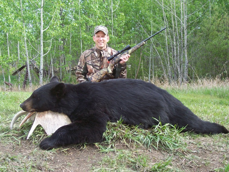 2010 Alberta bear broadside 5-19-16
