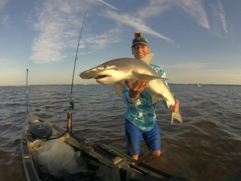 Andrew shark 5-26-16