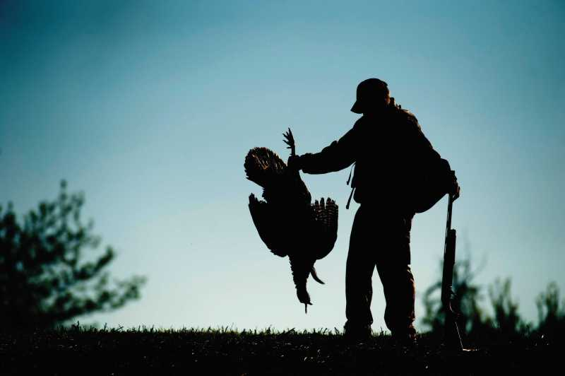 Tactics and Gear for Last-Minute Turkey Hunting | OutdoorHub