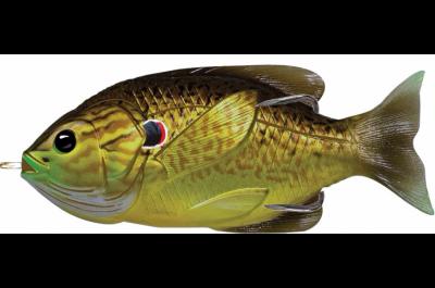 Livetarget Hollow Body Sunfish 6-9-16