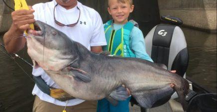 catfish 6-17-16
