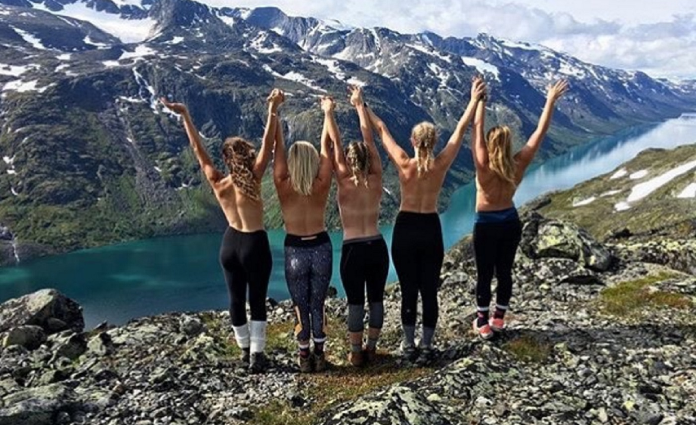 mountain tits