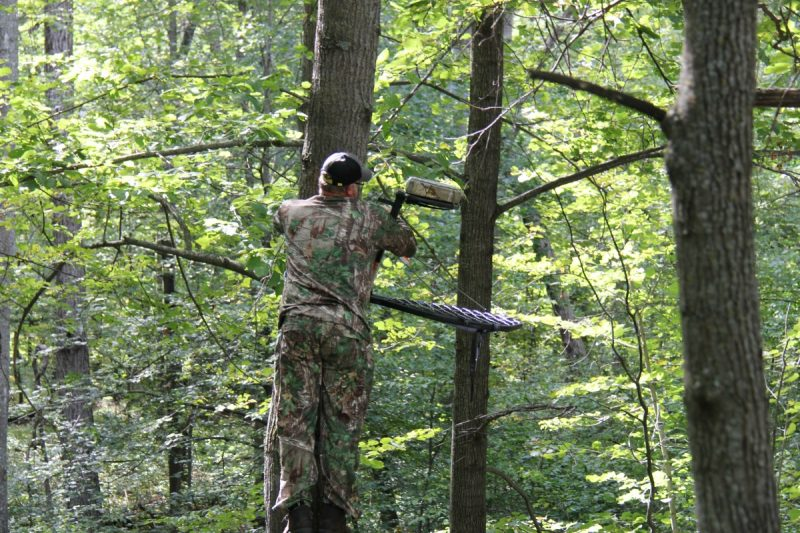 Hang multiple treestands for various wind directions so you don't have to wait long for the right conditions. Waiting a few days for the right wind might cost you a shot at a buck.