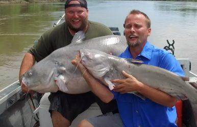 Blue catfish 8-29-16