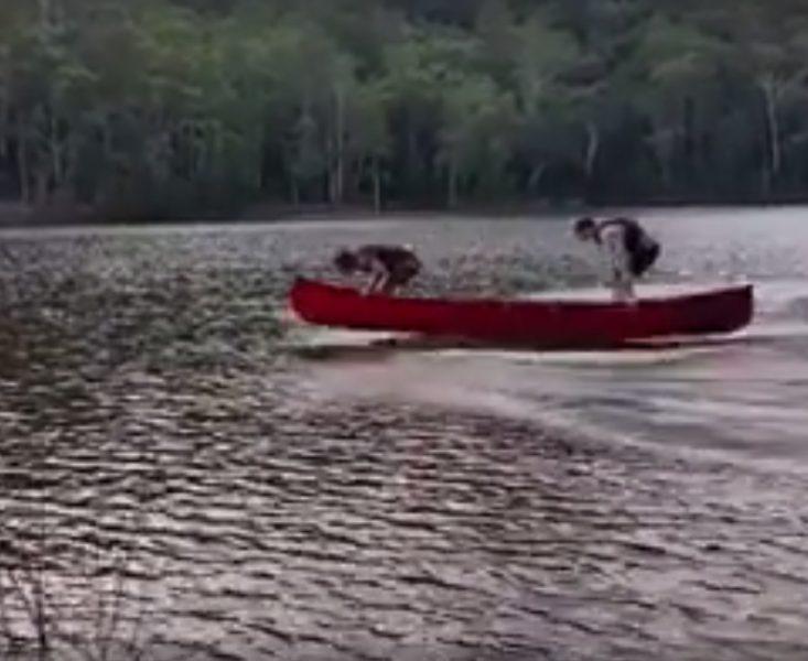 Canoe funny pic 8-10-16