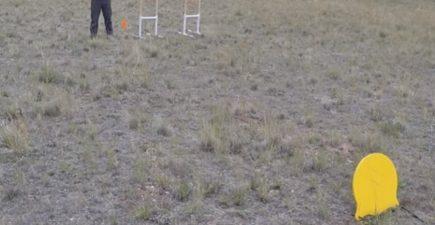 Mule Kick target 8-11-16