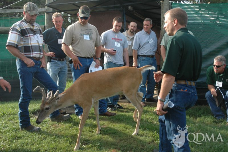 A great deal of information about whitetail biology is available through the program.