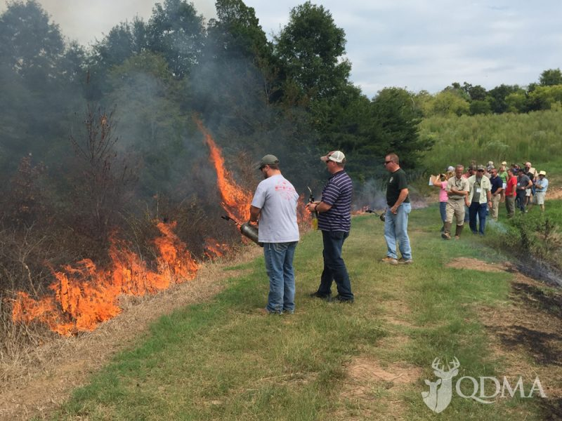 Prescribed burns are a part of the instruction on habitat improvement.