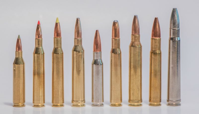 The .308 Winchester cartridge in the middle is not the longest, most powerful, or fastest. But, as big-game cartridges go, it is the most balanced.