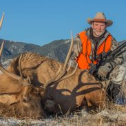 Some will tell you a .308 Winchester is not enough for elk, but a .308 with a 165-grain AccuBond had no trouble toppling the author's bull at 345 yards.
