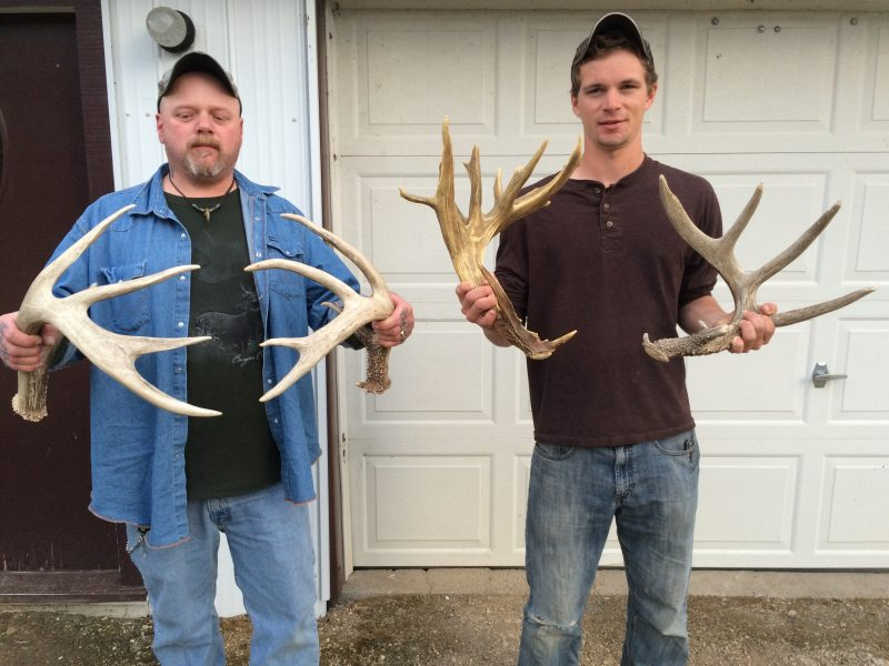 Shed antlers like these held by my friend Paul and my son Dawson are what brought me to hunt the early bow season in Manitoba with Tom Ainsworth of Grandview Outfitters.