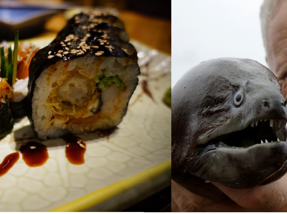 4 Ugly Fish That Taste Delicious