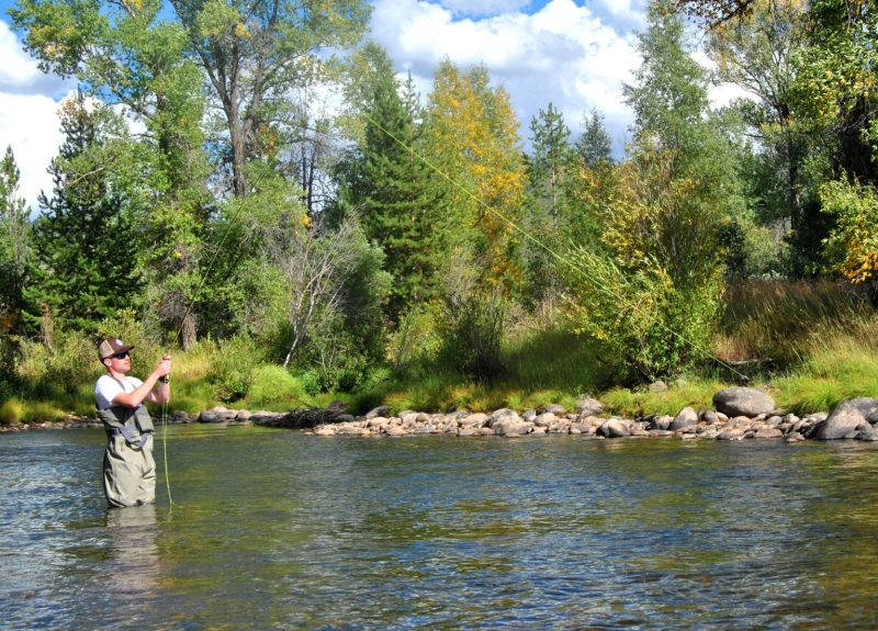 The author battling a trout on the Elk River.